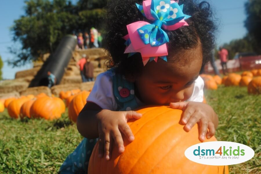 30 Ways to Celebrate Fall in Des Moines
