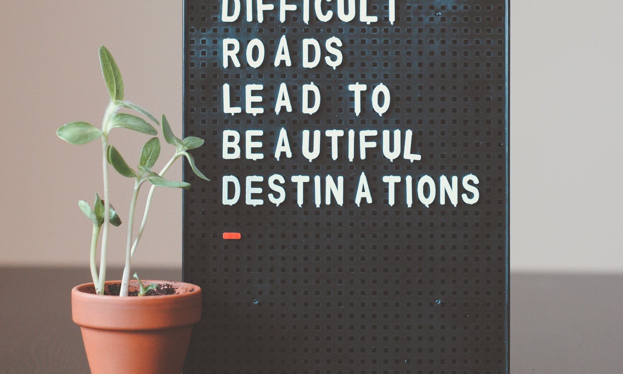 """Wall decor next to house plant stating """"difficult roads lead to beautiful destinations"""""""