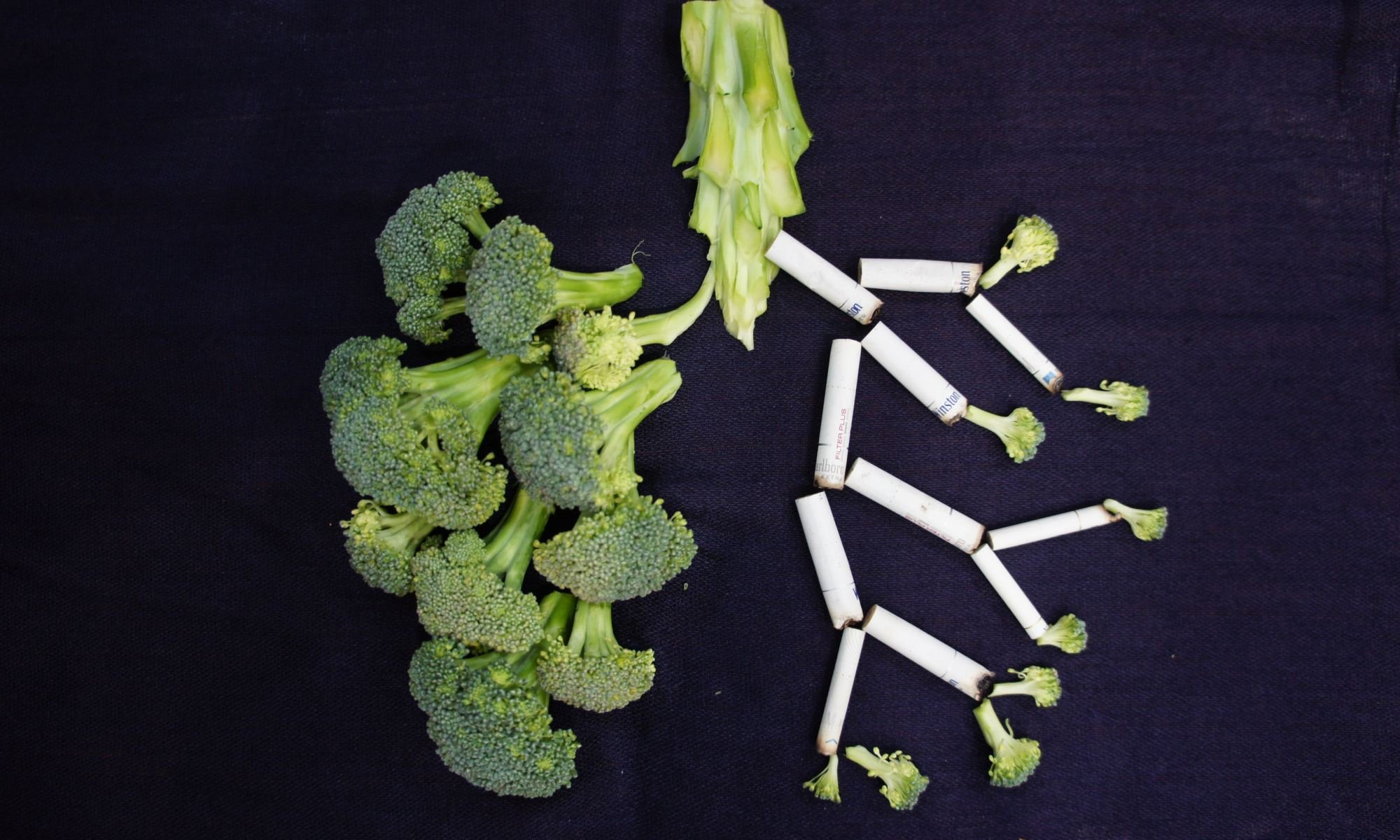 Green broccoli and cigarettes arranged in the shape of lungs