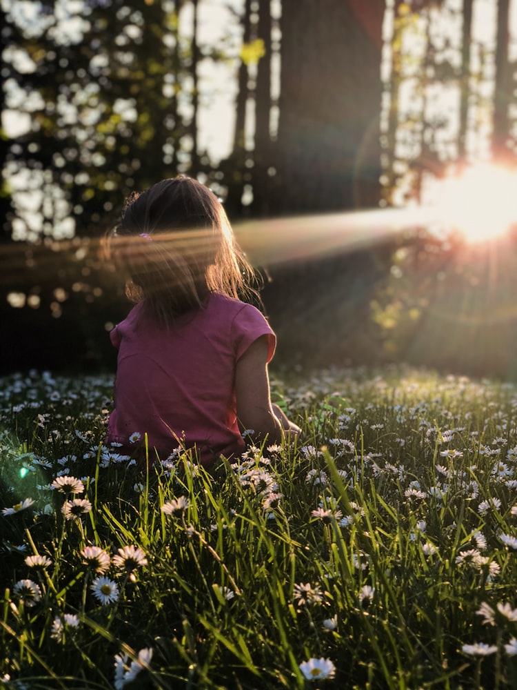 Girl reminiscing while sitting on daisy flowerbed in forest with sun shining on face
