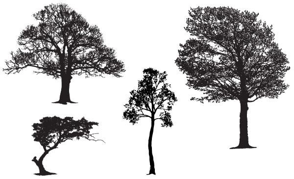 tree-10
