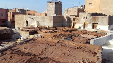 Animal hides in the tannery