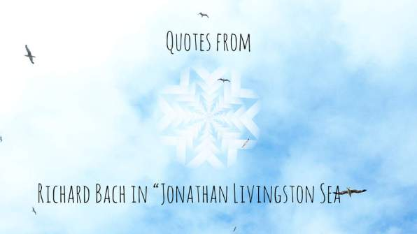 Livingstone-seagull-quotes (0-01-29-11)