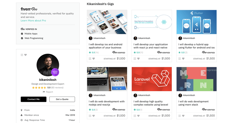 Kikaninilesh - web developer on Fiverr