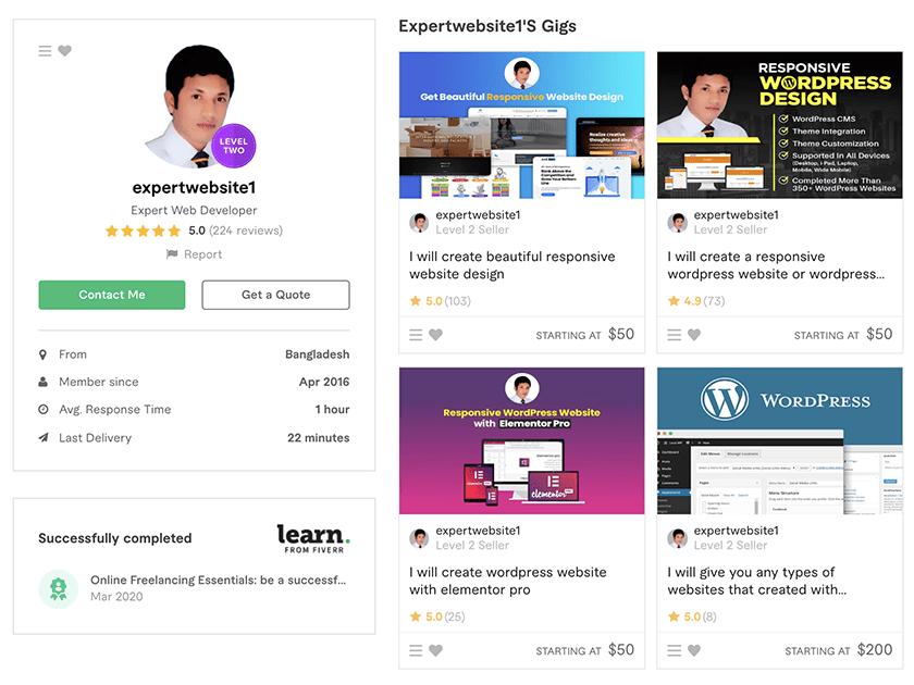 ExpertWebsite1 - web designer on Fiverr