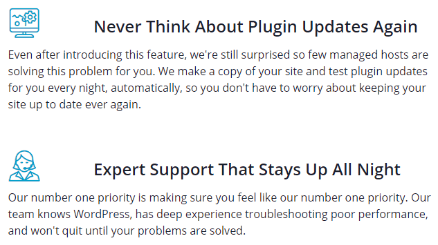 description-of-liquid-web's-plugin-manager-and-support-service