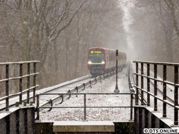 Den ersten Schnee des Jahres 2015 brachte der 24. Januar, an dessen Vormittag es begann zu schneien und gar nicht mehr aufhören wollte. Im Schneetreiben taucht DT5 317/326 aus Richtung Wandsbek-Gartenstadt kommend auf und erreicht in Kürze die Haltestelle Habichtstraße.