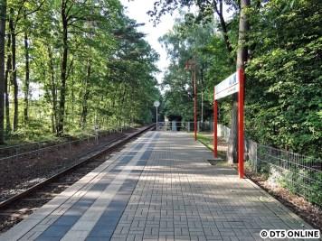 Bad Bramstedt Kurhaus, 06.08.2015 (11)