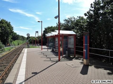 Holstentherme, 06.08.2015 (6)