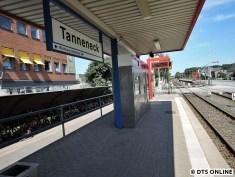 Tanneneck, 03.08.2015 (7)