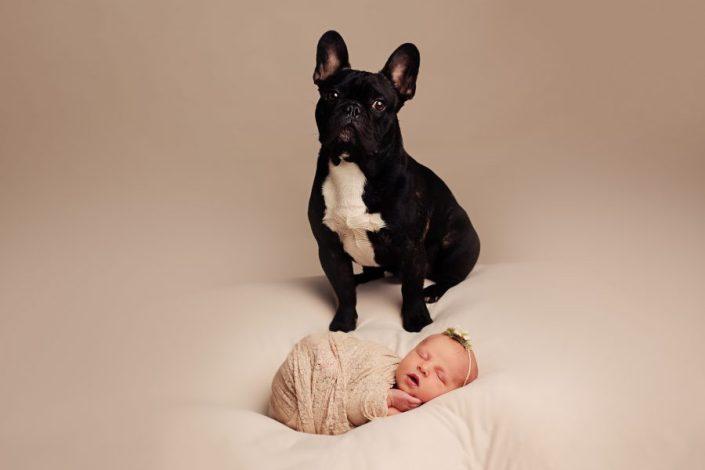 Newborn Photographer Glasgow - dog and baby