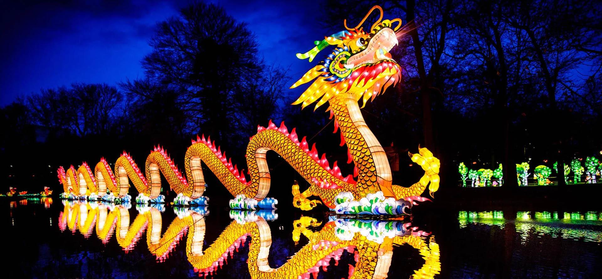 Zoo Lights Baltimore