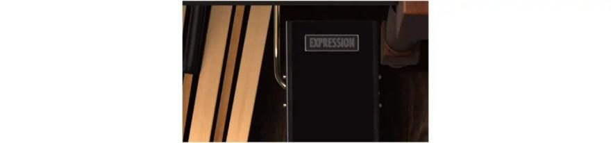 expression-pedal-b-3x
