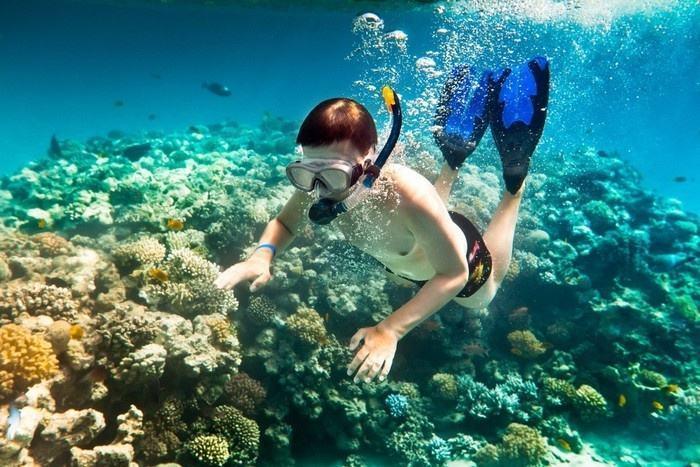 Lặn ngắm san hô ở đảo An Thới - một địa điểm du lịch Phú Quốc đẹp và hấp dẫn