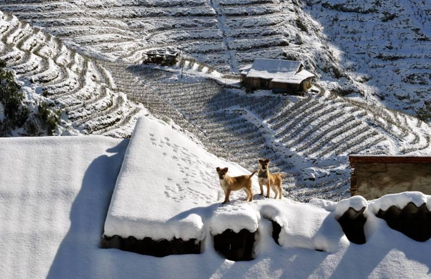 Du lịch Sa Pa vào mùa Đông có tuyết rơi