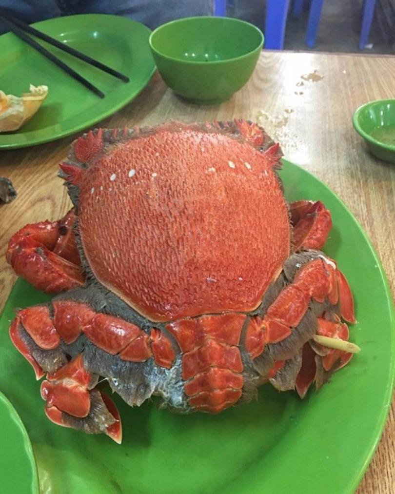 Đi Nha Trang nên ăn hải sản ở đâu (3)