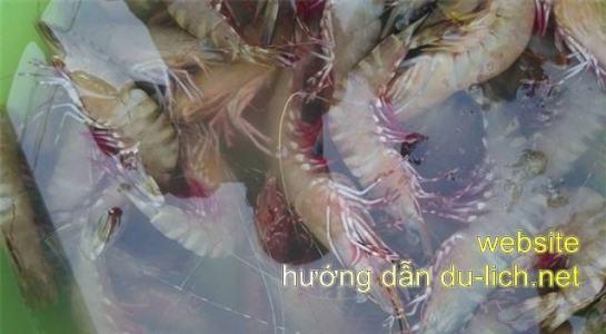 Review hon Mong Tay (3)