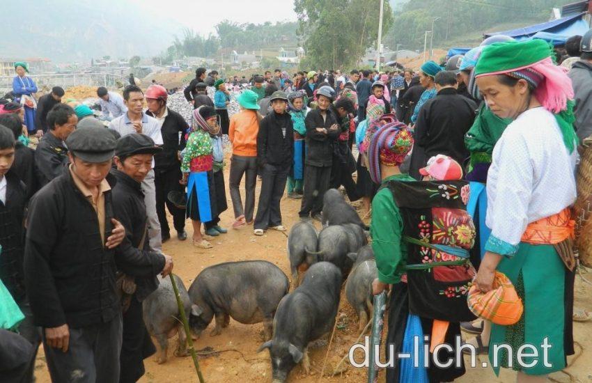 Hình ảnh ở xã Sà Phìn, Đồng Văn, Hà Giang