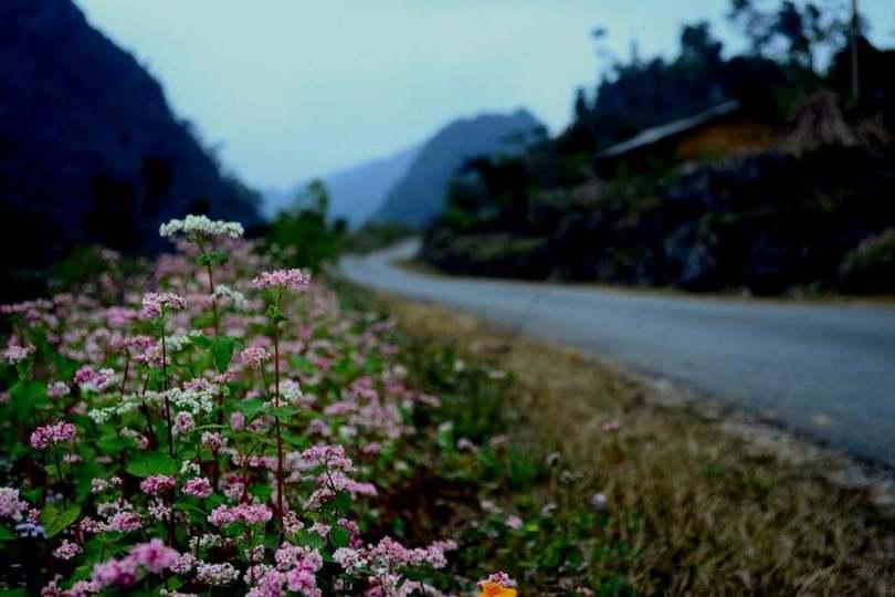 Dọc đường đi có rất nhiều cảnh đẹp cần dừng lại