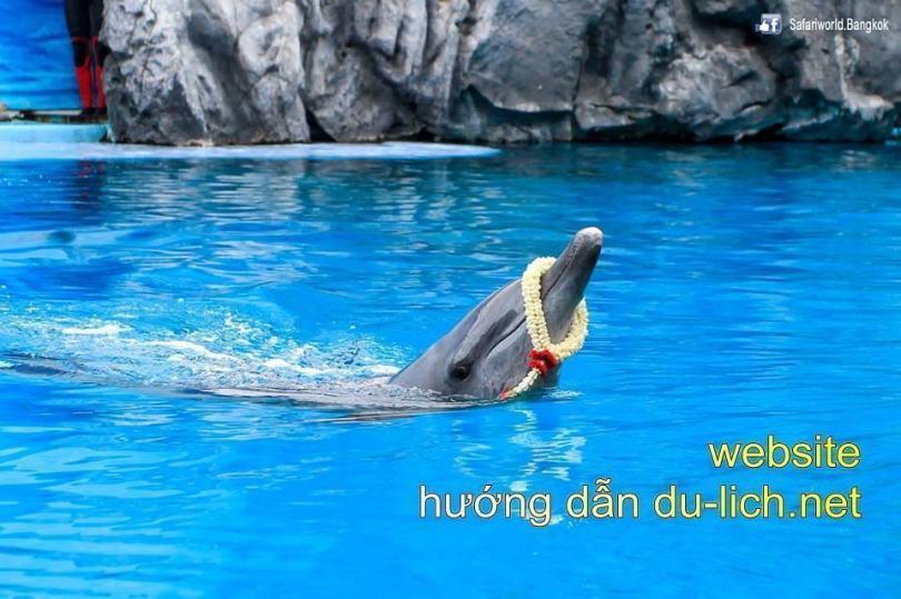Hình ảnh chụp tại Safari World Bangkok Thái Lan (2)