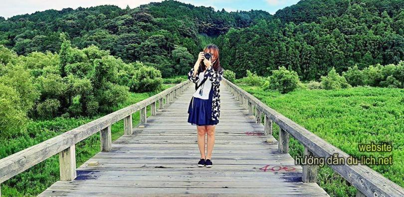 Hình ảnh cây cầu gỗ Horai (Nhật Bản)