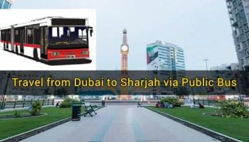 How To Travel From Abu Dhabi To Dubai Via Public Bus Transport