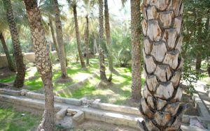 Ősi öntözőrendszer, al Ain oázis