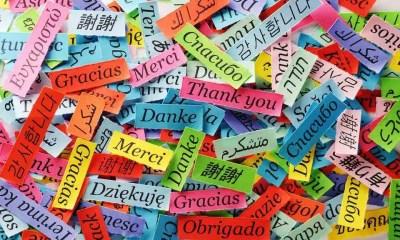 Italiano, inglese, arabo