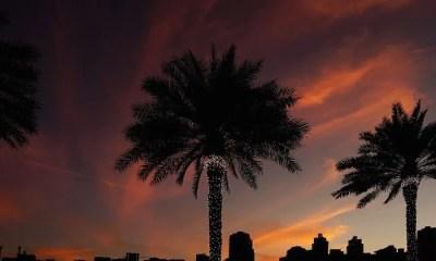 Vita da expat: abituarsi a Dubai