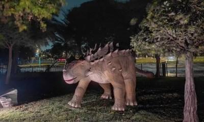 Una giornata diversa tra dinosauri e luci