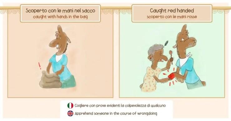 Le espressioni idiomatiche di Ciro il Cammello