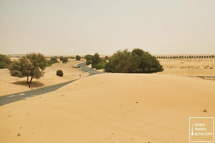 Dubai desert oasis resort