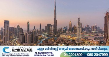 Multiple entry visa to UAE for AED 650: How to apply