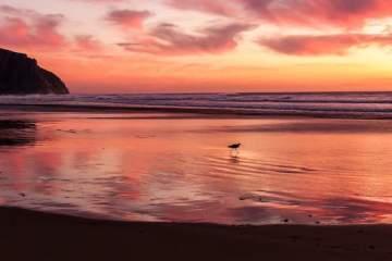 Sunset © Michael Baird