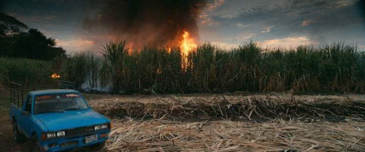 Burning sugar cane -- This Changes Everything