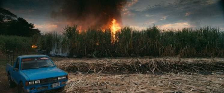 Burning sugar cane -- This Changes Everything