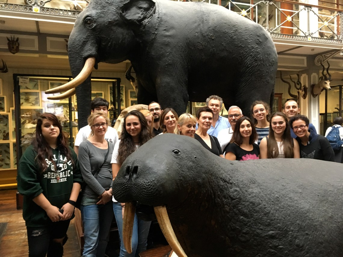 Nat Hist Museum with Horner School group