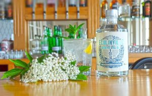 Irish Whiskey Trail Echlinville Gin