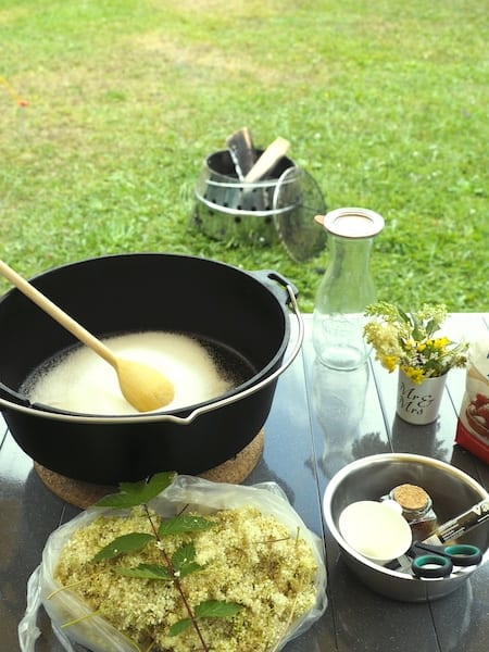 Outdoor cooking of meadowsweet syrup