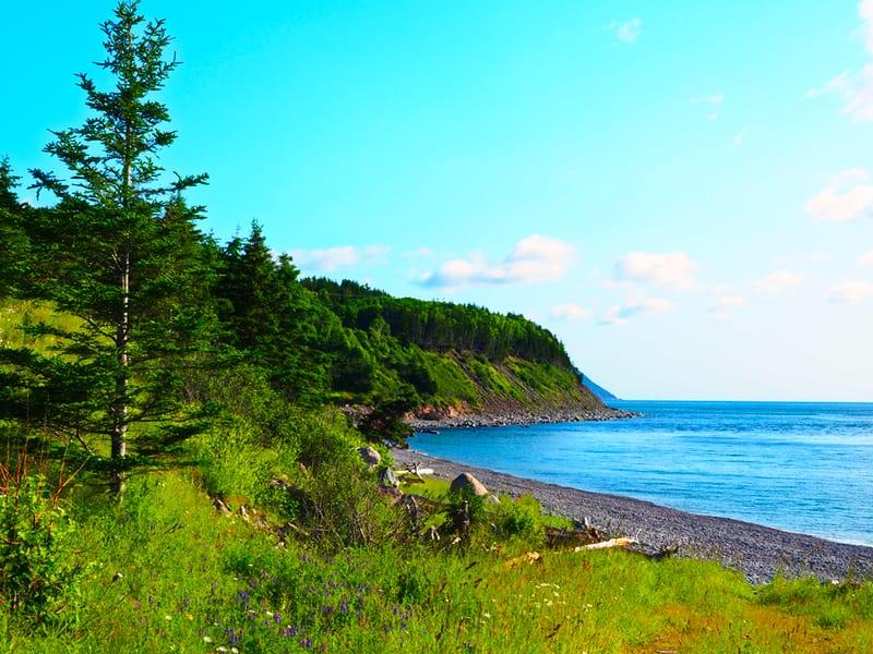 Cape Breton ist eine unserer beliebtesten Regionen, die wir besucht haben.