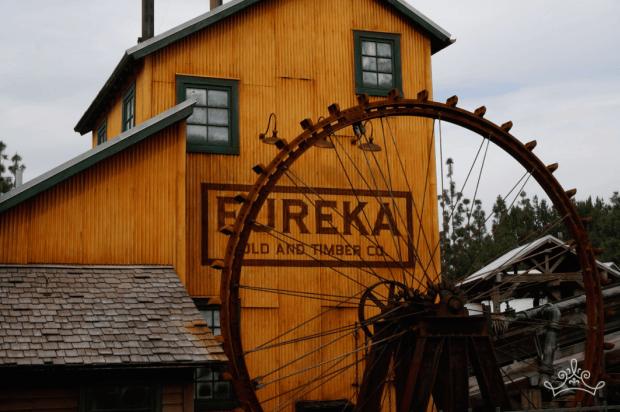 The Pelton Wheel