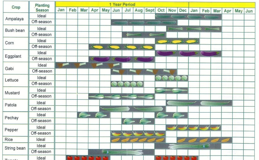 Planting Calendar for the Philippines