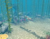 Mermaid underwater at dive site