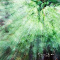 abstract-leaves-22