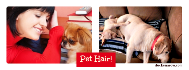 Pet hair? Tips for dog owners on how to keep your house clean! #cleaning Ducks 'n a Row
