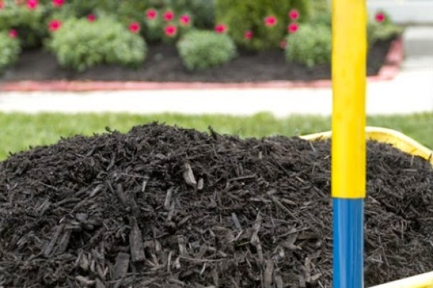 Mulch beautifies your gardens and benefits them, too.#gardens #mulch #plants #flowers Ducks 'n a Row