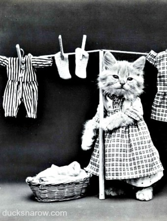 How to wash laundry in 5 easy steps #tips