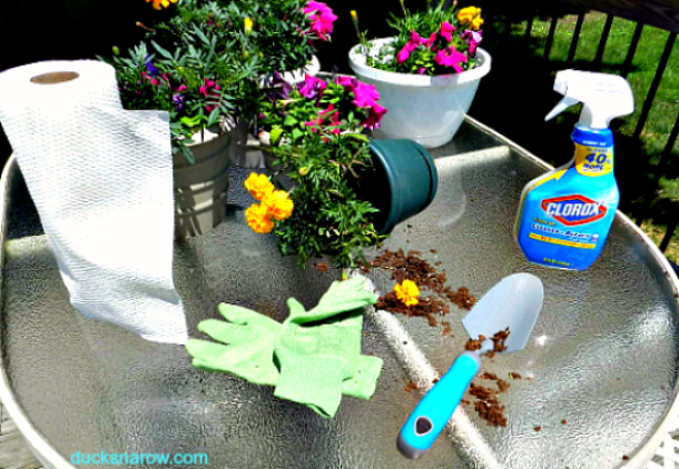 cleaning tips, gardening