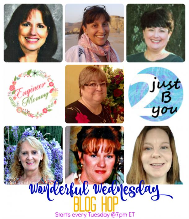 Co-hosts of the Wonderful Wednesday blog hop