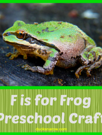 Really cute craft for preschool theme F is for Frog
